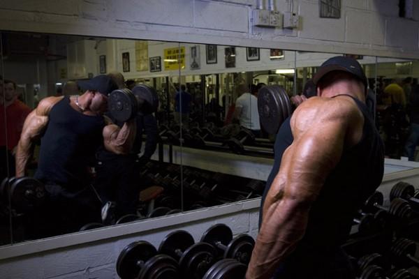 Training Styles