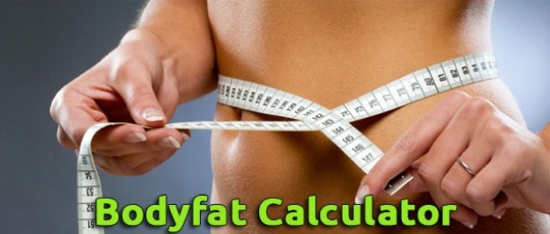 BodyFatCalculator