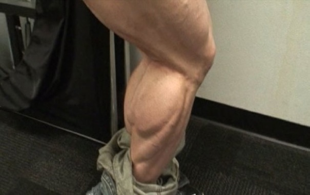 Calf Muscle