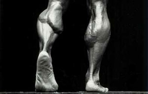 Arnold Calf Muscles