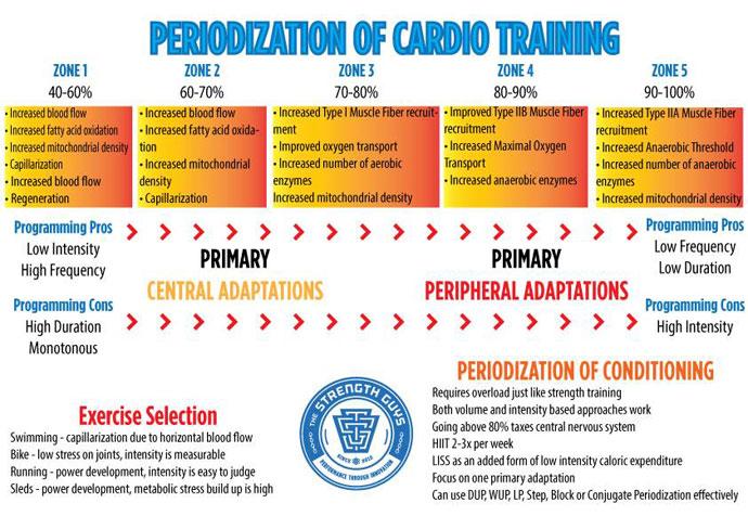 Cardio Programming