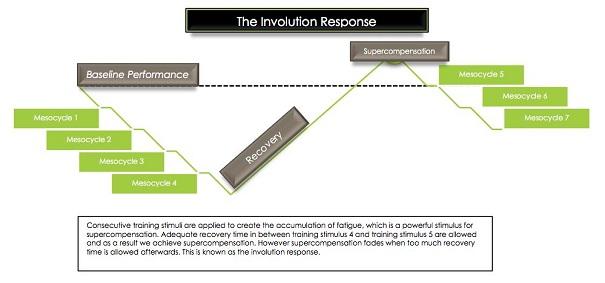 involution response