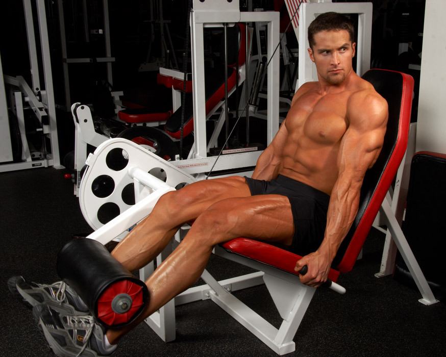Layne Norton Leg Extensions