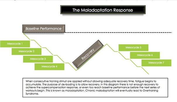 maladaptation response